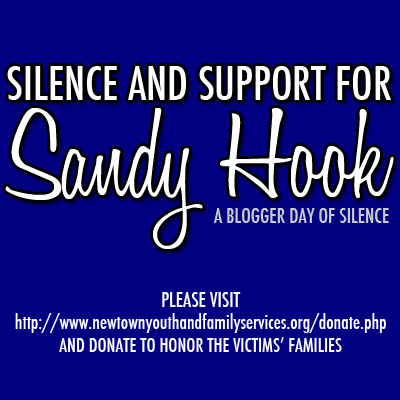 Sandy Hook Support