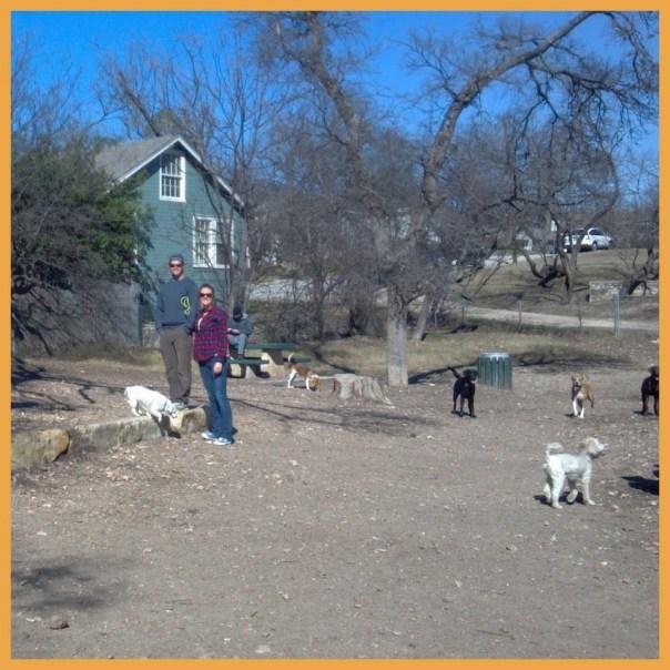West Austin Park - Dog Park!
