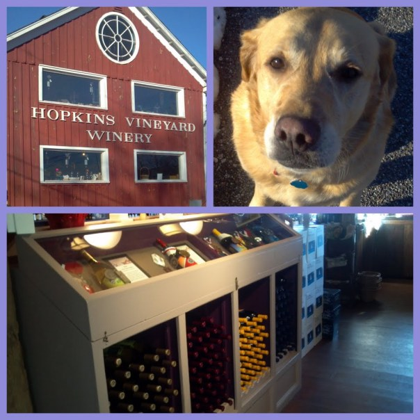 Hopkinds Vinyard2
