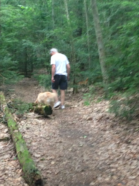 dad and taz on the trail